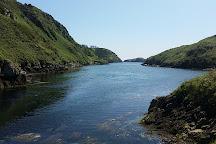 Lough Hyne, Skibbereen, Ireland