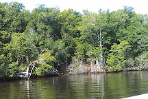 Four Mile Cove Ecological Preserve, Cape Coral, United States