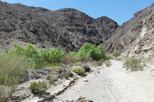 Darwin Falls, Death Valley National Park, United States