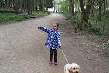 Wyre Forest, Bewdley, United Kingdom