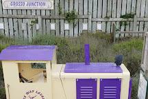 Wolds Way Lavender, Malton, United Kingdom
