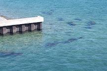 Manatee Lagoon, West Palm Beach, United States
