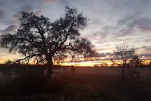 Minyip Bushland Reserve, Minyip, Australia