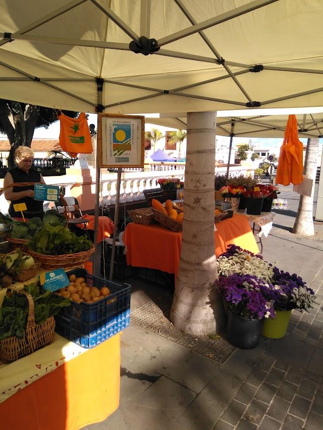 Mercado del Agricultor y Artesano