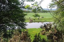 Twthill, Rhuddlan, United Kingdom