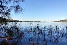 Narrabeen Lagoon State Park, Narrabeen, Australia