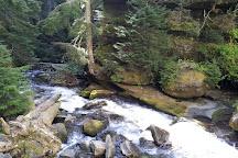 Salt Creek Falls, Oakridge, United States