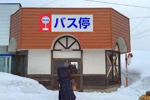 Togari Onsen Ski Resort, Iiyama, Japan