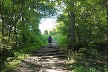 Tri State Peak Trail, Cumberland Gap, United States