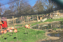 Hanwell Zoo, London, United Kingdom