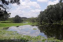 Edward Medard Regional Park, Plant City, United States