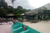 Angel Diver, Pulau Perhentian Kecil, Malaysia