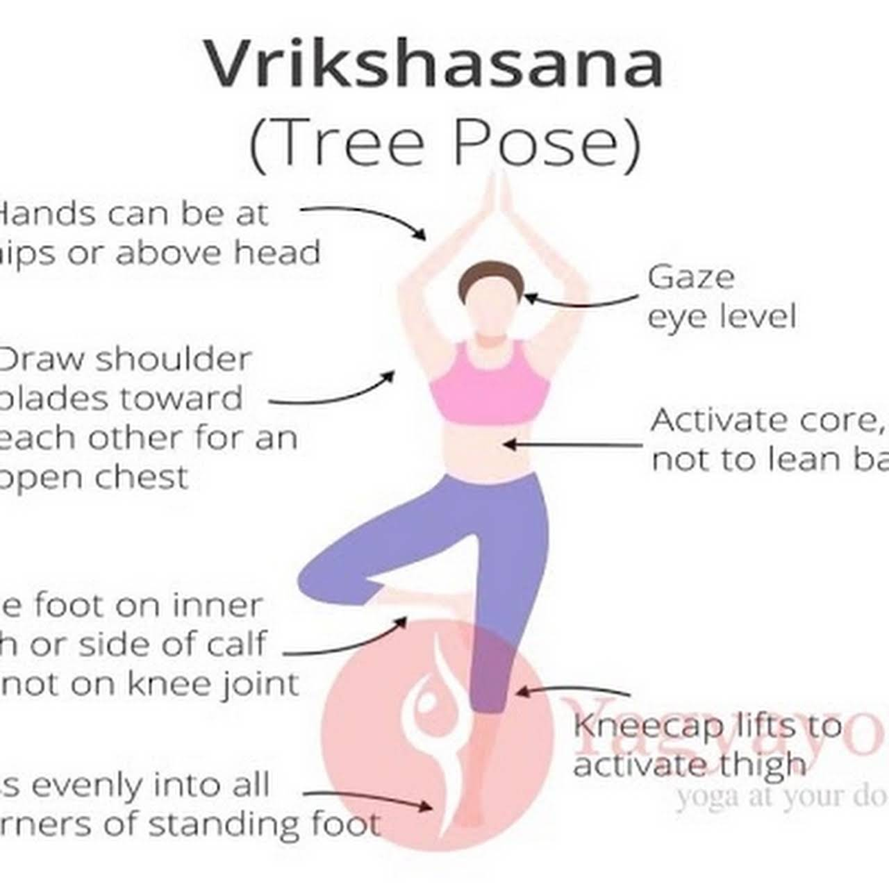 Yagya Yoga Classes Certified Female Yoga Teacher Yoga Instructor In Ahmedabad
