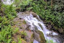 Botanical World Adventures, Hakalau, United States
