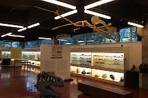 Museu do Instituto Oceanografico, Sao Paulo, Brazil