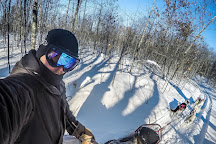 Wolfsong Adventures in Mushing, Bayfield, United States