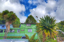 The Lost Gypsy Gallery, Papatowai, New Zealand