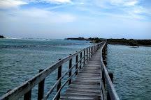 The Boardwalk, Urunga, Australia