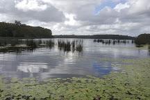 Dularcha National Park, Landsborough, Australia
