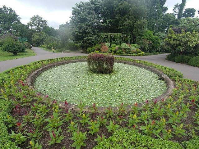 Royal Spice Garden