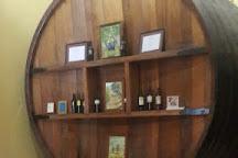 Vinas de Segisa, Pocito, Argentina