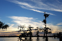 Lake Martin, Breaux Bridge, United States