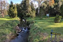 The Tasmanian Arboretum, Devonport, Australia