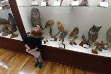 Tillamook County Pioneer Museum, Tillamook, United States