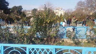 Balkh Market