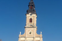 Catedrala Greco-Catolica Sfantul Nicolae, Oradea, Romania