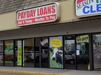 Payday Now Loans Payday Loans Picture