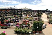 Weidner's Gardens, Encinitas, United States