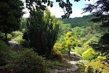 Cae Hir Gardens, Cribyn, United Kingdom