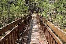 Hawn State Park, Sainte Genevieve, United States