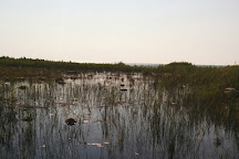 Brucedale Conservation Area, Port Elgin, Canada