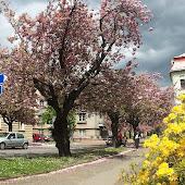 Железнодорожная станция  Rokycany