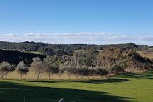 Peninsula Galleries, Red Hill, Australia