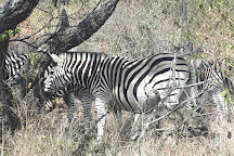 Groenkloof Nature Reserve, Pretoria, South Africa