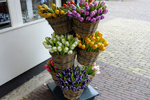 Alkmaar cheese market, Alkmaar, The Netherlands