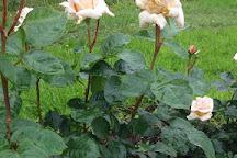 Royal National Rose Society Gardens, St. Albans, United Kingdom