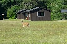 Millersylvania State Park, Olympia, United States