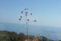 Sorgente Olmitello, Isola d'Ischia, Italy