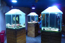 Beijing Underwater World Exhibition, Beijing, China