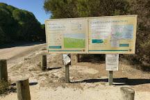 Mimosa Rocks National Park, Tanja, Australia