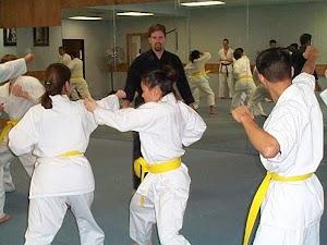 North Austin 少林 Kung Fu and Tai Chi