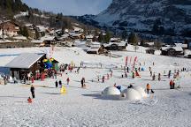 Bodmi Arena, Grindelwald, Switzerland