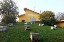 Apicoltura Dott. Invernizzi, Melzo, Italy