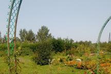 Memorial Botanical Garden. G.A.Demidova, Solikamsk, Russia