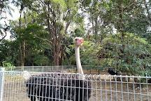 Mini Zoo Taman Teruntum, Kuantan, Malaysia