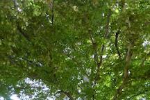 Jardin Henri Vinay, Le Puy-en-Velay, France